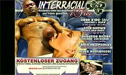 4freeinterracia